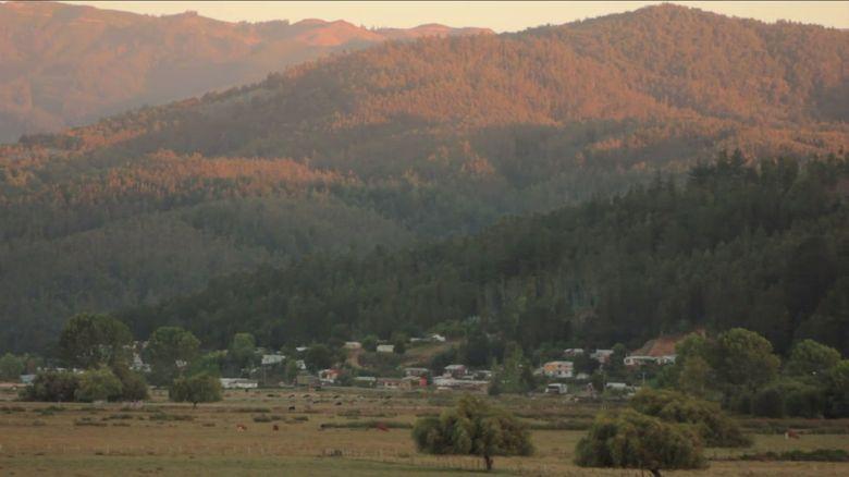 Vecinos rechazan línea de alta tensión que pasaría sobre humedal en Carampangue [VIDEO]