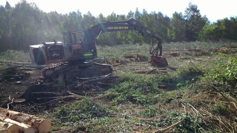 Cinco maquinarias incendiadas en un presunto ataque incendiario en Mulchén